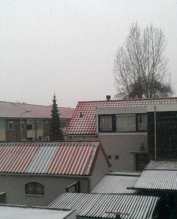 Тихо се сипе белият сняг...