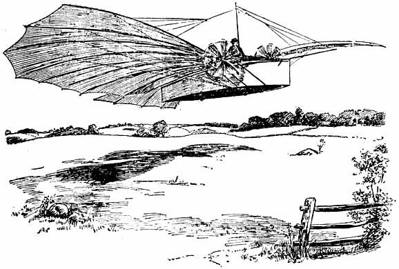 Скицата от полета на Уайтхед
