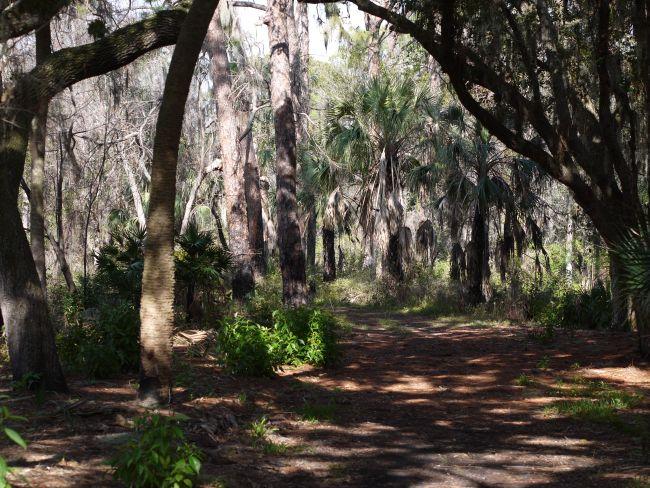Природният парк